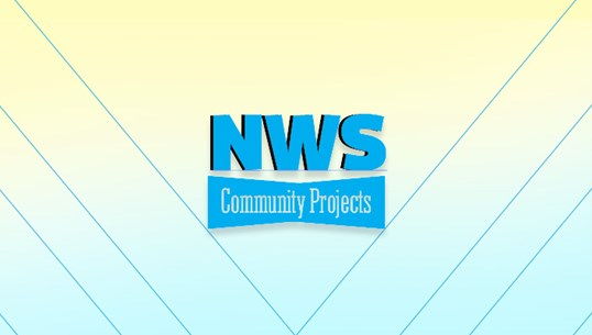 Fellows lead month of Community Projects
